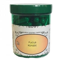 KA Fucus Konjac