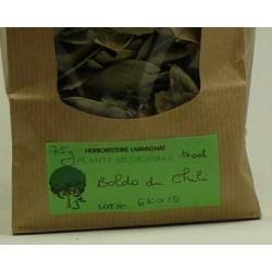 BOLDO du CHILI paquet de 50g
