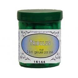 TRIBULUS 350 mg