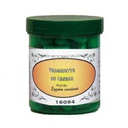 VERGERETTE DU CANADA 230 mg