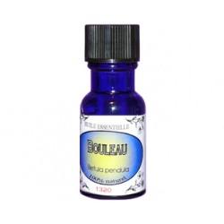 BOULEAU Betula pendula flacon de 15 ml