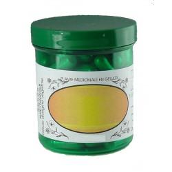 CIMICIFUGA 500 mg